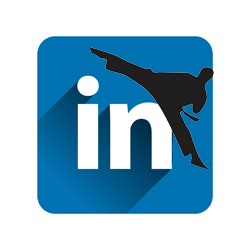 The first steps to becoming a LinkedIn master